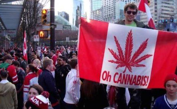 カナダで来春から大麻合法化。果たして実現するのか&現地の反応は?